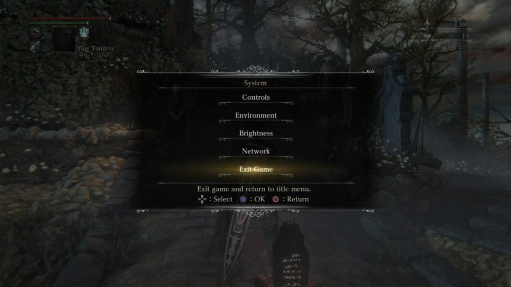 Bloodborne™_20150526203110