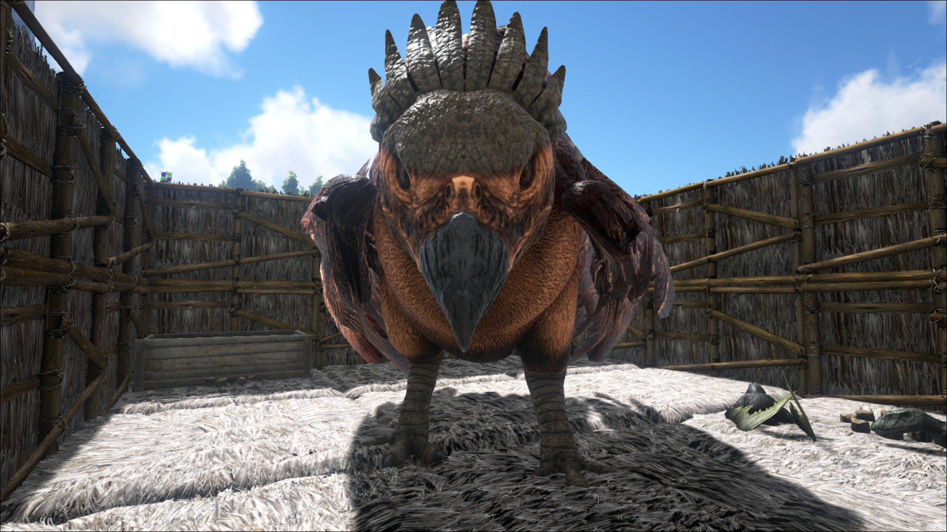ark_survival_evolved_bird_gamersinbeta