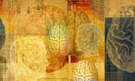 gambling-brain